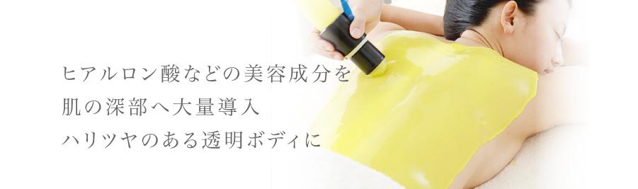 ヒアルロン酸などの美容成分を肌の深部の大量導入ハリツヤのある透明ボディに